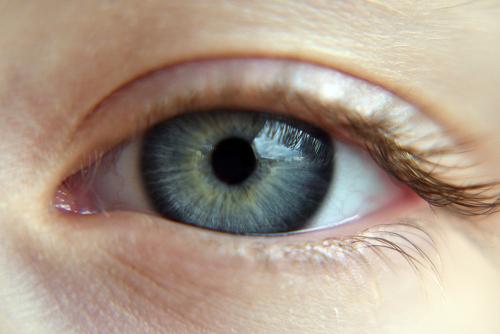 Ludzkie oko – budowa i funkcje oka człowieka